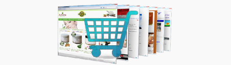 special offer £599 for an ecommerce website